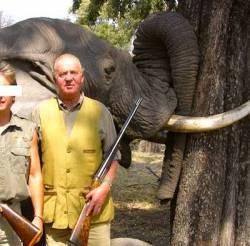 El rei espanyol, amb l'elefant assassinat durant una cacera reial.